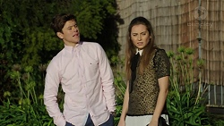 Angus Beaumont-Hannay, Piper Willis in Neighbours Episode 7482