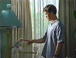 Dahl, Billy Kennedy in Neighbours Episode 3002