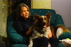Steph Scully, Harvey in Neighbours Episode 3746