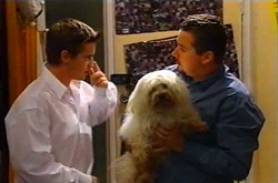 Tad Reeves, Toadie Rebecchi, Bob in Neighbours Episode 3746