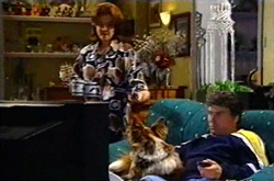 Lyn Scully, Harvey, Joe Scully in Neighbours Episode 3751