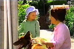 Emily Hancock, Lyn Scully, Harvey in Neighbours Episode 3753
