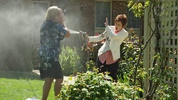 Sheila Canning, Susan Kennedy in Neighbours Episode 7527