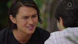 Leo Tanaka, David Tanaka in Neighbours Episode 7541