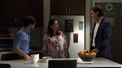 David Tanaka, Kim Taylor, Leo Tanaka in Neighbours Episode 7569