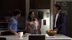 David Tanaka, Kim Tanaka, Leo Tanaka in Neighbours Episode 7569