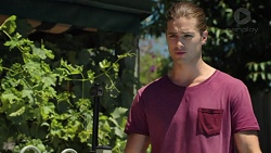 Tyler Brennan in Neighbours Episode 7597