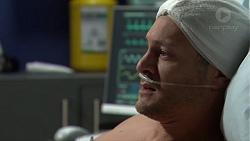 Finn Kelly in Neighbours Episode 7634