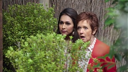 Dipi Rebecchi, Susan Kennedy in Neighbours Episode 7691