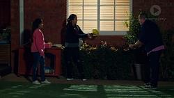 Kirsha Rebecchi, Yashvi Rebecchi, Toadie Rebecchi in Neighbours Episode 7695